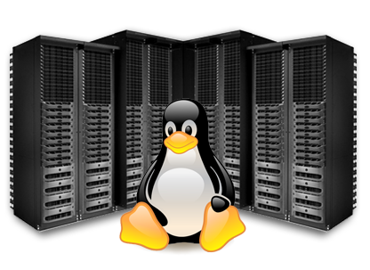 hosting linux premium
